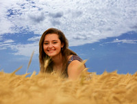 wheat and sky_6865